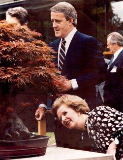 Margaret Thatcher admires Bonsai during 1986 Tokyo Economic Summit