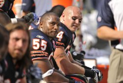 Bears' Urlacher and Briggs sit on bench against Falcons in Chicago