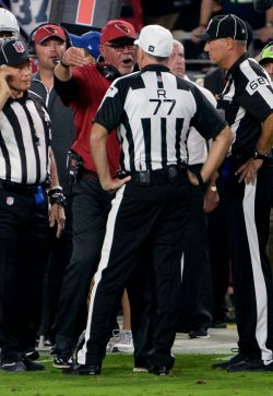 Cardinals' Arians has words with referee