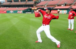 Chicago Cubs - St. Louis Cardinals baseball game rained out