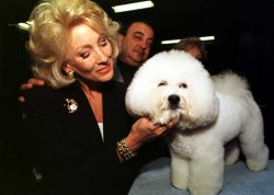 paula jones lawyer goes to the dogs