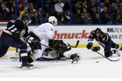 Anaheim Ducks vs St. Louis Blues hockey