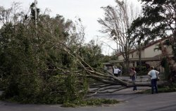 HURRICANE WILMA AFTERMATH
