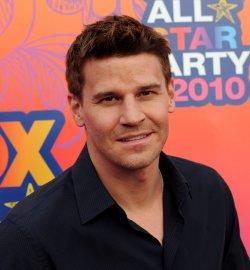 David Boreanaz attends the FOX All-Star Party in Santa Monica, California