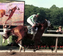 POINT GIVEN WINS BELMONT STAKES BY 11 LENGHTS