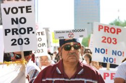 RALLY TO PROTEST PROPOSITION 203
