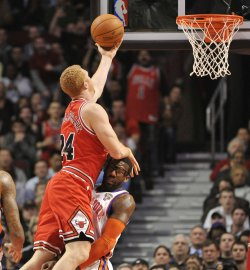 Bulls' Scalabrine Charges into Knicks' Stoudemire in Chicago