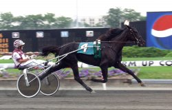 Horse racing at the Meadowlands