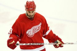 SAN JOSE SHARKS VS DETROIT RED WINGS WESTERN CONFERENCE SEMIFINALS
