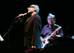 STEELY DAN IN CONCERT