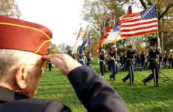 VETERANS DAY IN WASHINGTON