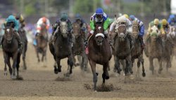 2006 KENTUCKY DERBY WINNER BARBARO EUTHANIZED