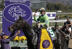 2013 Breeders Cup World Championships in Arcadia