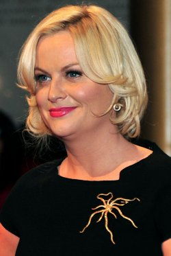 Amy Poehler arrives for the 2010 Mark Twain Prize in Washington