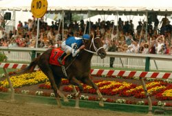 RUNNING OF THE 2004 PREAKNESS