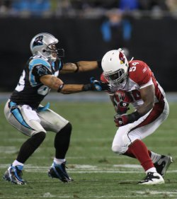 Carolina Panthers vs. Arizona Cardinals