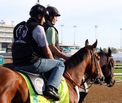 Horses prepare for the Kentucky Derby in Louisville, Kentucky
