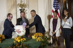 President Obama Pardons the National Thanksgiving Turkey in Washington, D.C.
