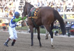 131 PREAKNESSS STAKES