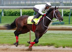 Kentucky Derby Preview in Louisville, Kentucky