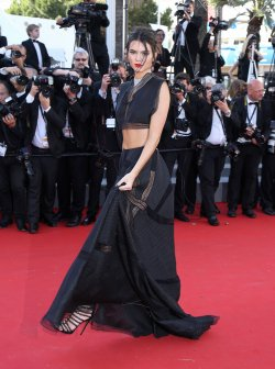 68th Annual Cannes International Film Festival