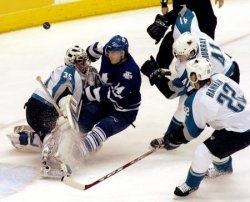 TORONTO MAPLE LEAFS VS SAN JOSE SHARKS