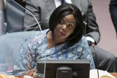 UN Security Council Meets in New York City