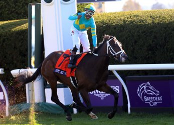 Fire At Will Wins the Breeders Cup Juvenile Turf