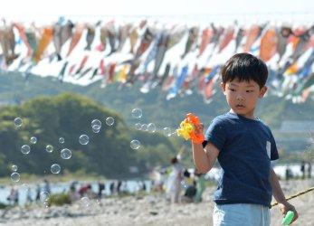 Carp Streamers Fly for Children's Day in Japan