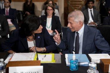 Fauci and Walensky Testify Regarding Covid at Senate Hearing