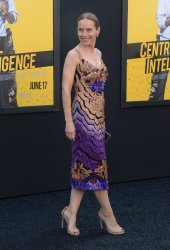 "Amy Ryan attends the ""Central Intelligence"" premiere in Los Angeles"