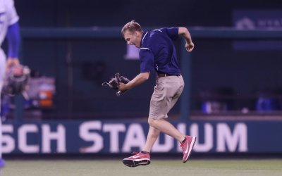 Cat runs on field at Busch Stadium