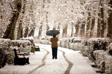 Snow falls in Tehran