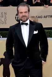 David Harbour attends the 24th annual SAG Awards in Los Angeles