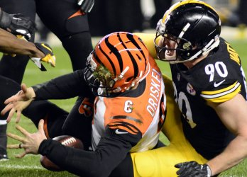 Steelers  T.J. Watt Sacks Bengals Quarterback Driskel