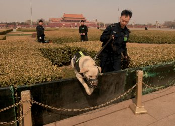 Chinese bomb-sniffing K-9 units work before the NPC in Beijing, China