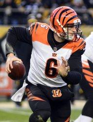 Bengals Quarterback Jeff Driskel Scrambles 12 Yards