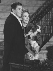 President and Nancy Reagan with Dog Rex lighting National Christmas Tree