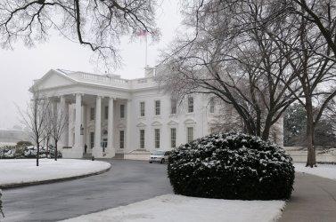 Winter Storm hits Washington