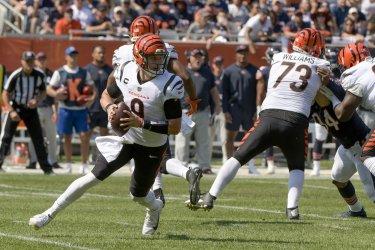 Cincinnati Bengals vs Chicago Bears in Chicago