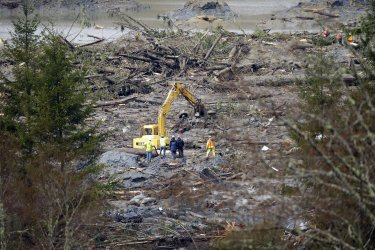Search and rescue personnel search for survivors in Washington State