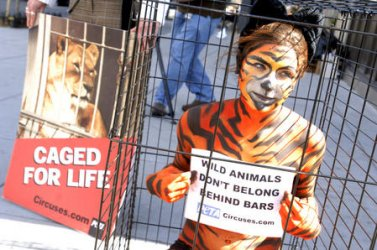 PETA PROTEST RINGLING BROTHERS AND BARNUM & BAILEY CIRCUS