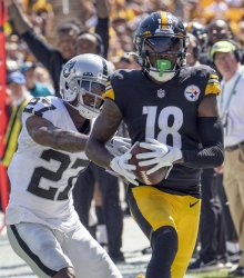 Steelers Diontae Johnson 41 Yards Reception in Pittsburgh