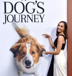Emily Bear attends 'A Dog's Journey' premiere in LA