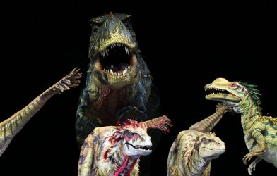 """Walking With Dinosaurs  """"Feathered Fashion Show"""""""