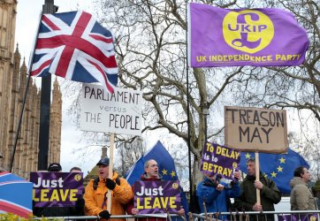 Protestors campaign ahead of Brexit Vote outside Houses of Parliament