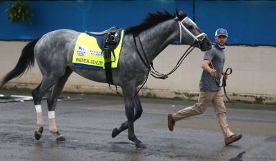 Kentucky Derby Favorite Essential Quality Prepares to go to the Track