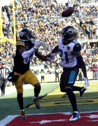 Pittsburgh Steelers Antonio Brown makes a catch for touchdown