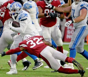 Lions' Anderson looks for a n opening