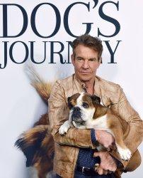 Dennis Quaid attends 'A Dog's Journey' premiere in LA